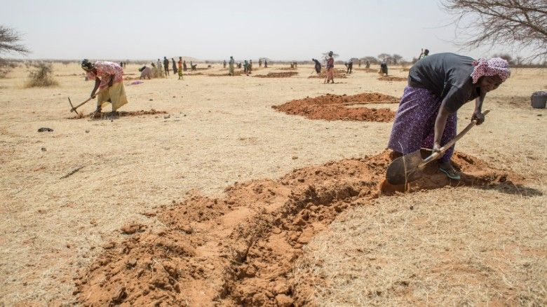Digging half moons for water conservation in Niger. Photo: Creative Commons
